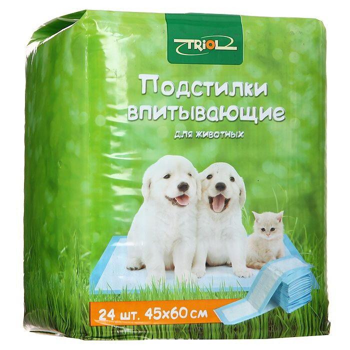 Дешевая одежда для собак спб